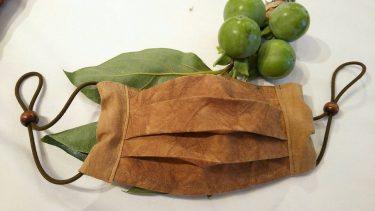 新型コロナを不活化すると大注目の「柿渋」。活用製品をピックアップ